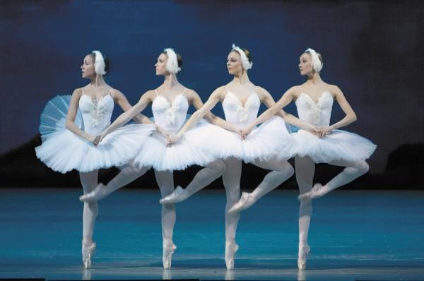 Dance of the Little Swans Ballet