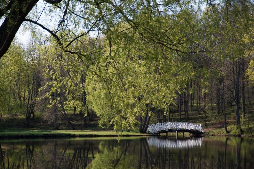 В парке. Фото: tarhany.ru