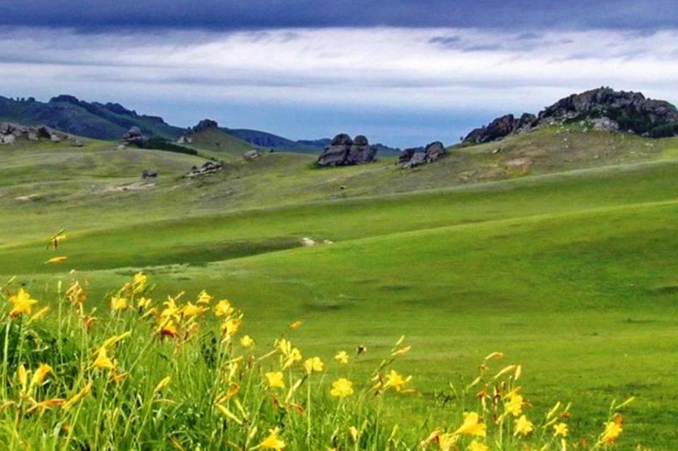 Леса Карпат попали всписок Всемирного наследства ЮНЕСКО