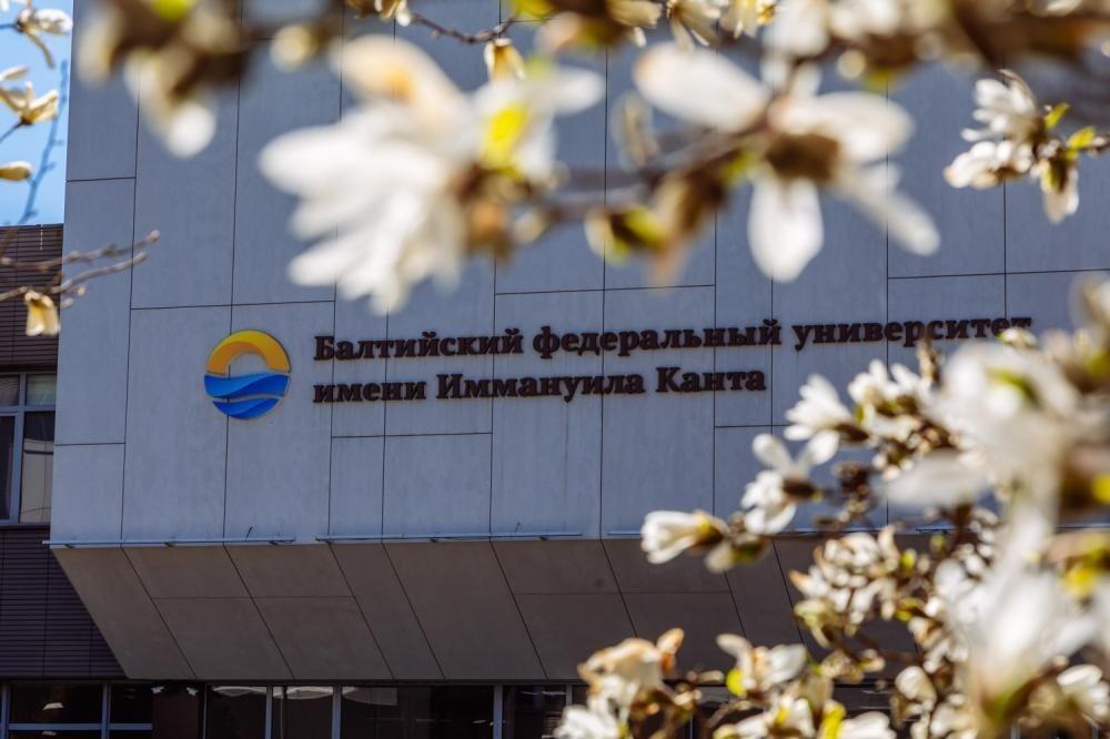 Фото: Балтийский федеральный университет им. Канта/vk.com###https://vk.com/wall-143552376_7907
