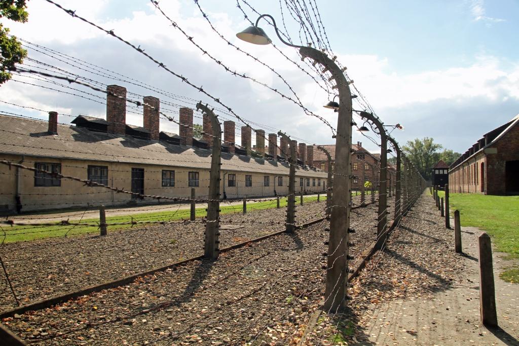 Ограждение лагерной зоны. Фото: pxhere.com