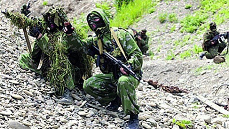 Жители России учавствуют ввоенных учениях «Славянское братство— 2016» вСербии